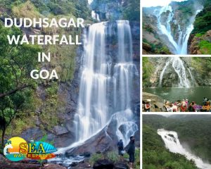 The Dudhsagar falls has a spellbinding natural beauty and is the perfect place to explore during the monsoon season. It is one of the tallest waterfalls in the country and due to the picturesque view it has to offer, this place has been used a prime shooting location in many of the Bollywood as well as regional movies.