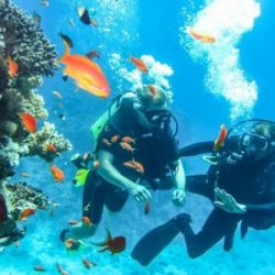 Hurry up! Experience Scuba Diving In Goa Before Monsoon Begins