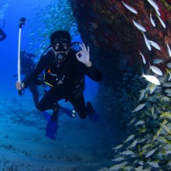 Experience Best Scuba Diving In Goa With Us!!