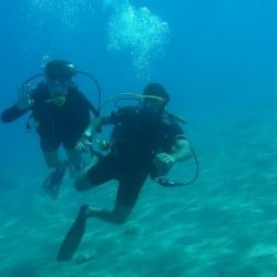 55 Helpful Guide Tips Everyone Should know Before You Try Scuba Diving In Goa