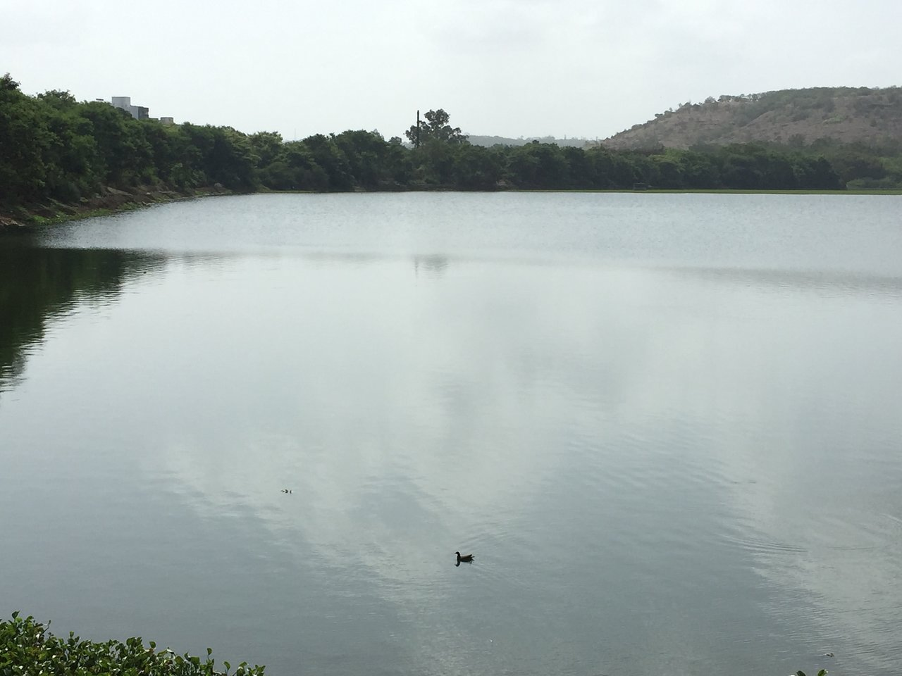 sutarwadi-lake-in-kolad