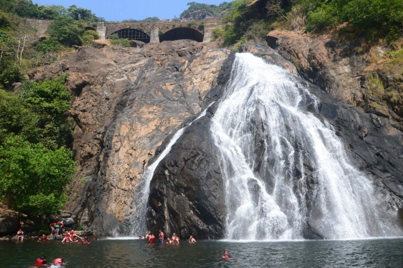 Dudhsagar Waterfall Trekking
